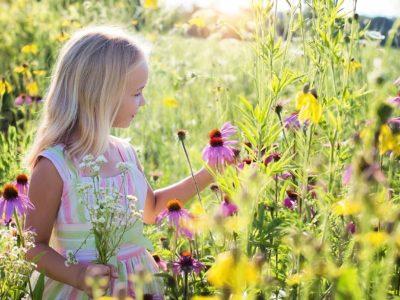 schöner Garten Blumen